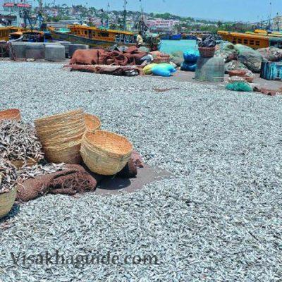 Fishing Harbour Vizag
